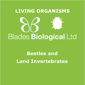 Beetles and Land Invertebrates