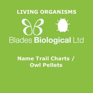 Name Trail Charts / Owl Pellets